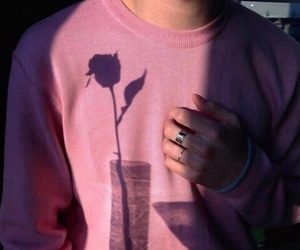 pink, rose, and boy image