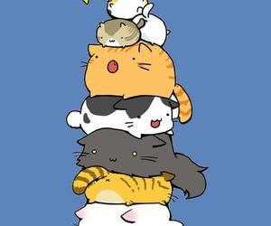 blanco, gatos lindos, and Gatos image