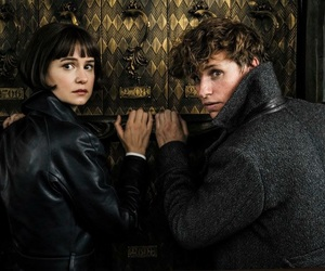 fantastic beasts, newt scamander, and eddie redmayne image
