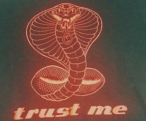 snake, quotes, and grunge image
