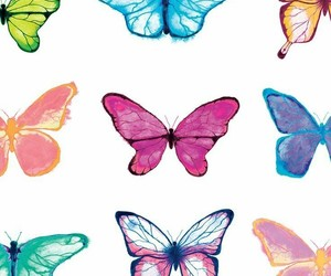 wallpaper, butterfly, and art image
