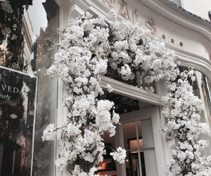 covent garden, flowers, and london image