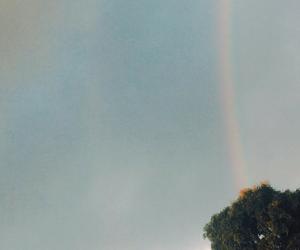 aesthetic, grunge, and rainbow image