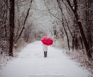 photography, red umbrella, and snowy image