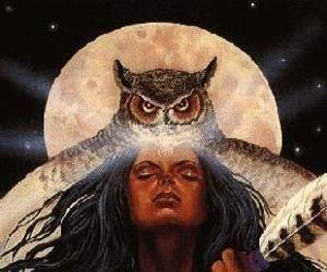 sagrado feminino, força, and coruja image