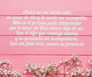 amor, frase, and rosa image