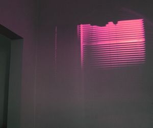pink, light, and night image