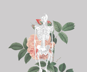 background, skeleton, and flowers image