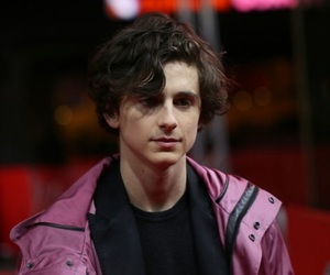adorable, perfection, and timothee image