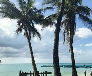 adventure, beach, and Island image