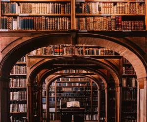 Libary, vibes, and cute image