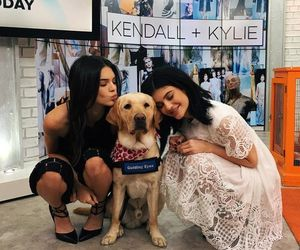 kendall jenner, kylie jenner, and dog image