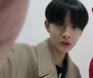 wanna one and bae jinyoung image