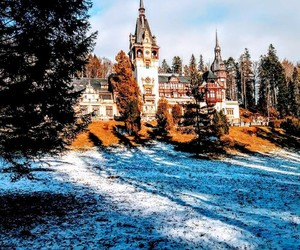 aesthetic, snow, and transilvania image