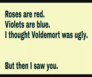 funny, voldemort, and lol image