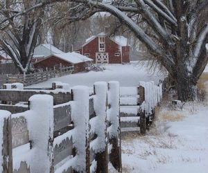 winter and farm image