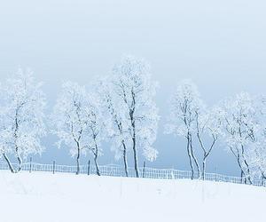 blue, landscape, and snow image