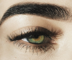 eyebrows, beauty, and eyes image