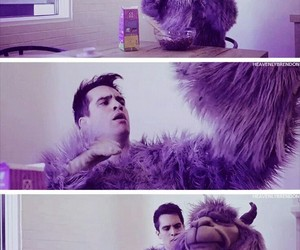 brendon urie, fall out boy, and llama image