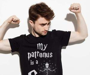 daniel radcliffe, harry potter, and groot image