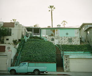 house, palm trees, and california image