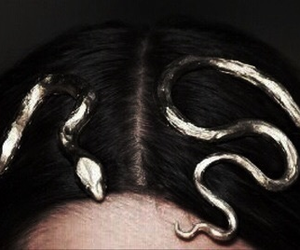 snake, gold, and hair image