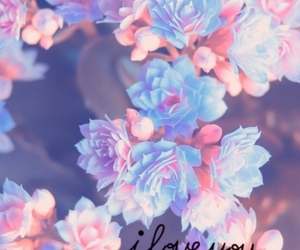 background, beautiful, and flower image