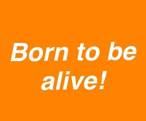 alive, orange, and free image