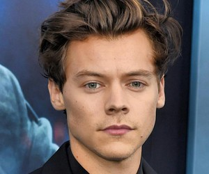 Harry Styles and model image