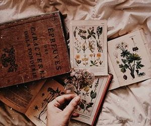 book, botanical, and dried image
