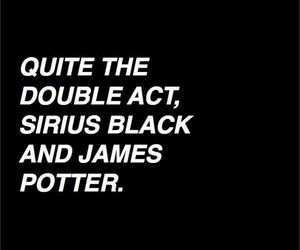 harry potter, hp, and sirius black image
