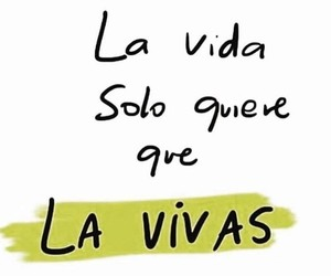 frases, live, and life image