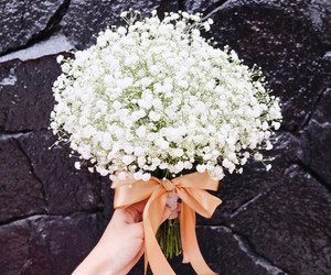 bouquet, flower, and babys breath flower image