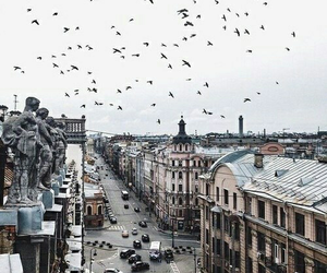 city, travel, and birds image