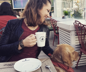 coffe, mydog, and golden image