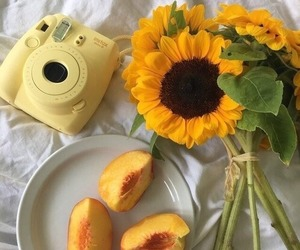 yellow, peach, and aesthetic image