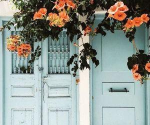 flowers, blue, and door image