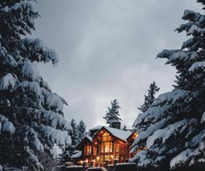lights, snow, and winter image