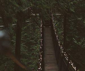 lights, nature, and bridge image