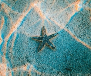 wallpaper, stars, and beach image