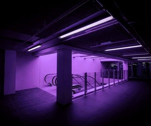 purple and neon image
