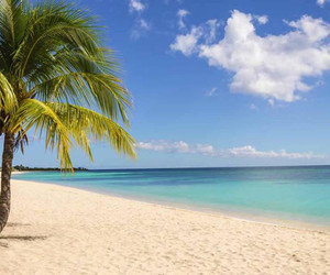 Anguilla, relax, and sole image