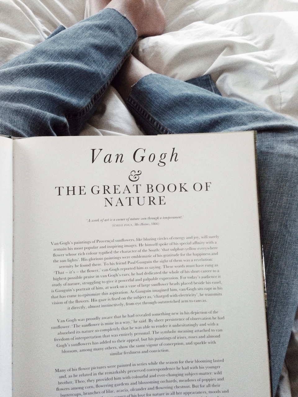 book, van gogh, and jeans image