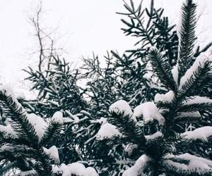 we heart it, fashion beauty pretty, and winter cosmetics image