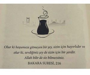 alıntı, türkçe sözler, and bakara süresi 216 image