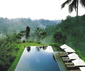 pool, nature, and travel image