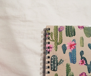 notebook, cactus, and tumblr image