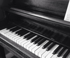b&w, black and white, and instrument image
