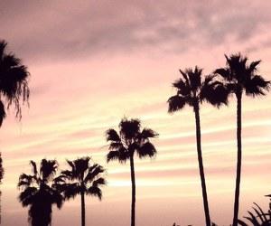 Island, palms, and paradise image