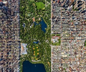 Central Park, city, and culture image